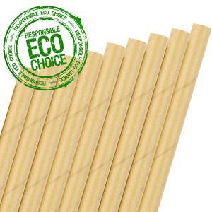 Box of 100 Kraft Paper Straws