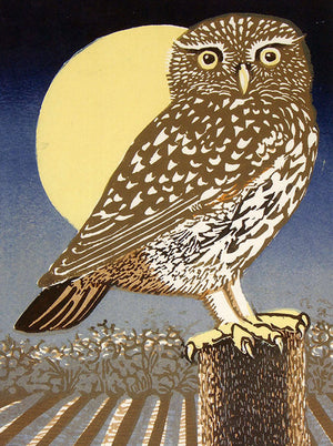Card Little Owl, Full Moon