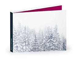 Christmas Cards Partridge Pack of 10