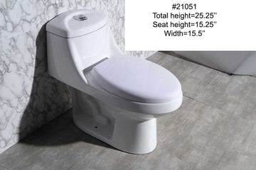 #21051 TOILET (ONE-PIECE)