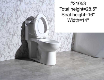 #21053 TOILET (ONE-PIECE)