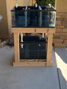 Saltwater Fish Quarantine Build