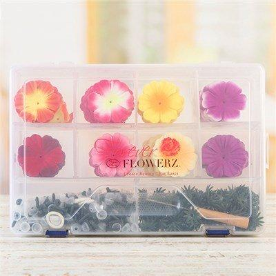 Forever Flowerz Brilliant Begonias Bumper Kit in Storage Box - FF-BEGB240