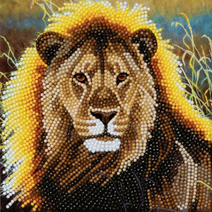 "CCK-A13: ""Resting Lion"" Crystal Card Kit"