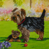 "CCK-A46 ""Yorkshire Terrier Dogs"" Crystal Art Card Kit"