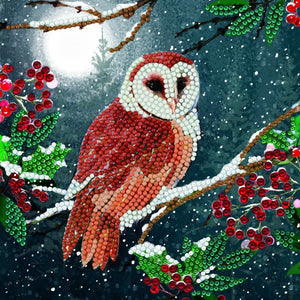 "CCK-A65: ""Barn Owl"" 18x18cm Crystal Art Card"