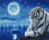 "CAK-KN1:""Lullaby"" White Tigers by Kentaro Nishino"