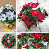 Forever Flowerz Pretty Poinsettias approx 120 flowers - FF_POIN120