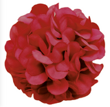 Flower Making Kit - Cute Camellias - available in various colours