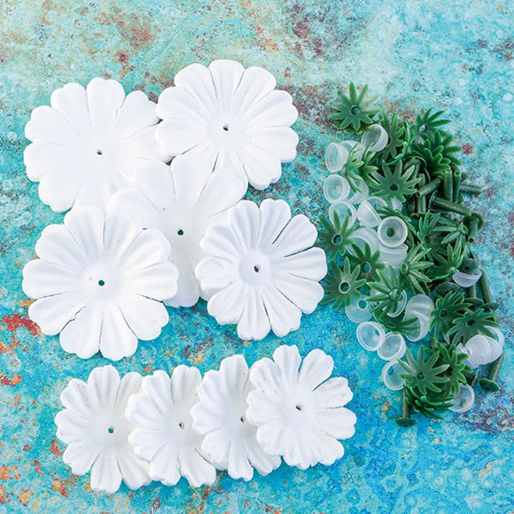 FFW-BEG30: Forever Flowerz White Begonia Kit - approx 30 Flowers