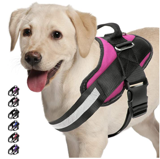 MyPetz™ Personalized Dog Harness, Best Reflective Dog Harness, Small Medium & Large Dogs, Easy Walk & Comfortable Dog Harness