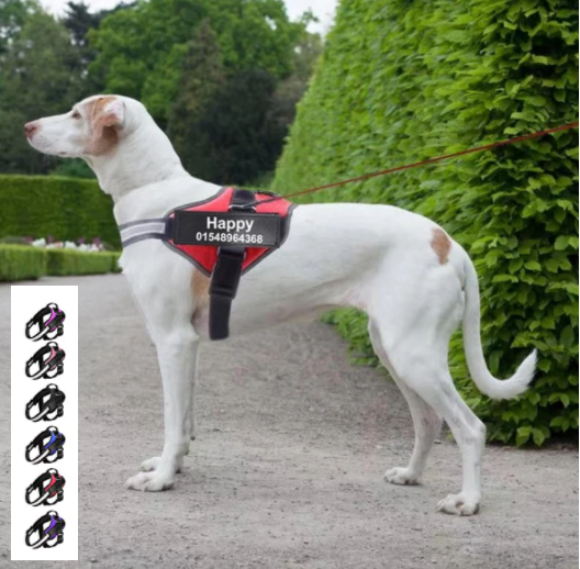 Bolux Personalized Dog Harness, Reflective Dog Harness, Best Dog Harness, Small Medium & Large Dog Harness, Easy Walk & Comfortable Dog Harness