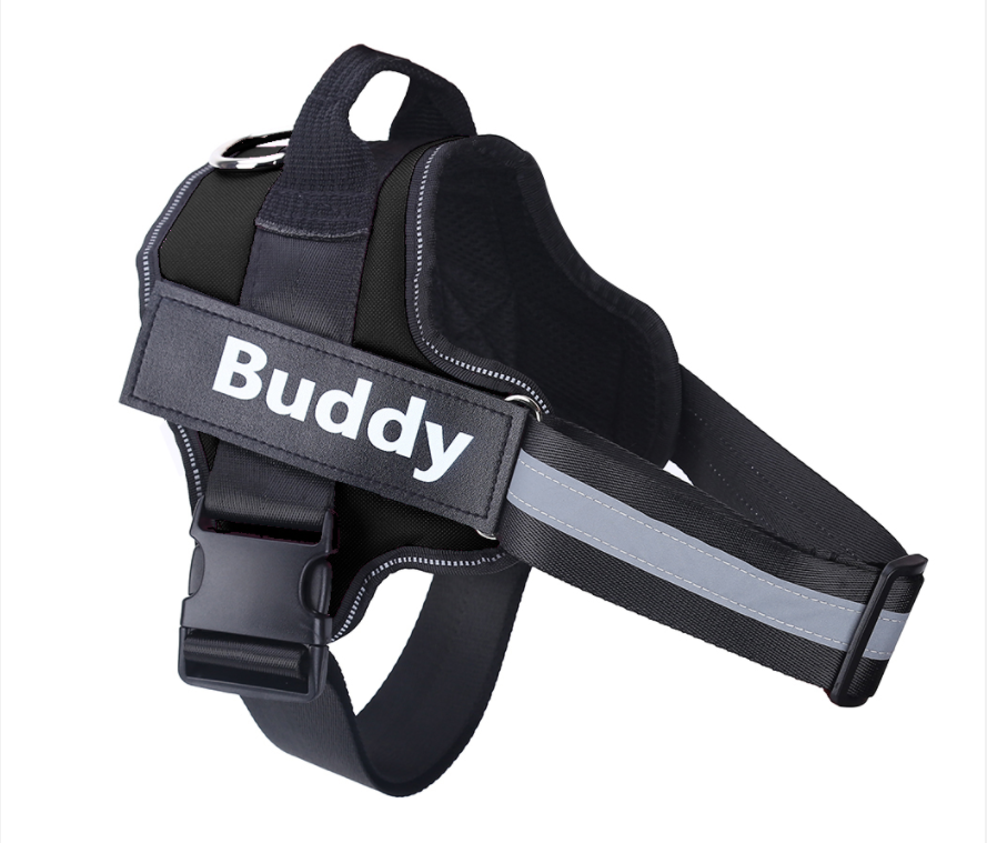 best dog harness for walking