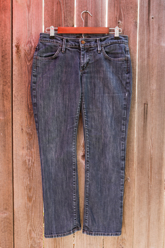 James Jeans | Dry Aged Denim | Size 30 | Style: Ritchie