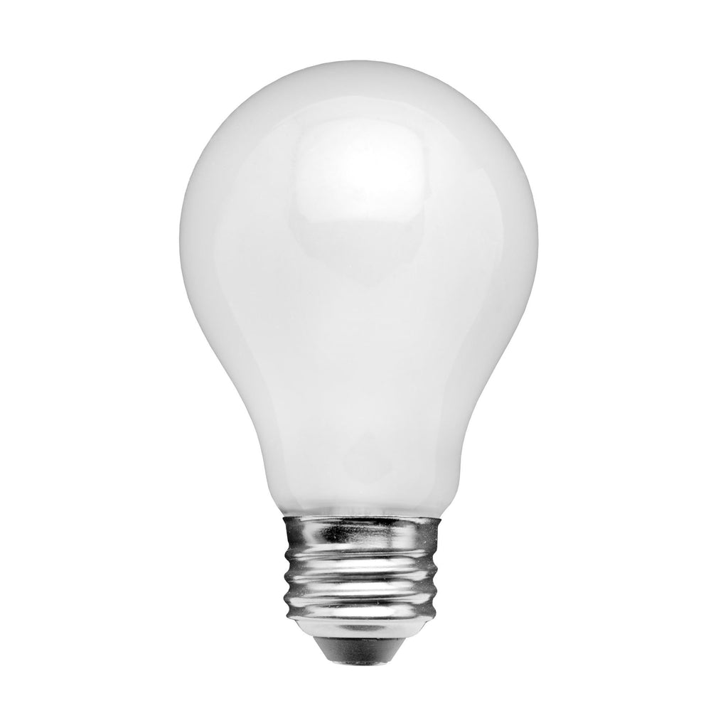 Frosted Glass A19 7W 2700K LED Light Bulb