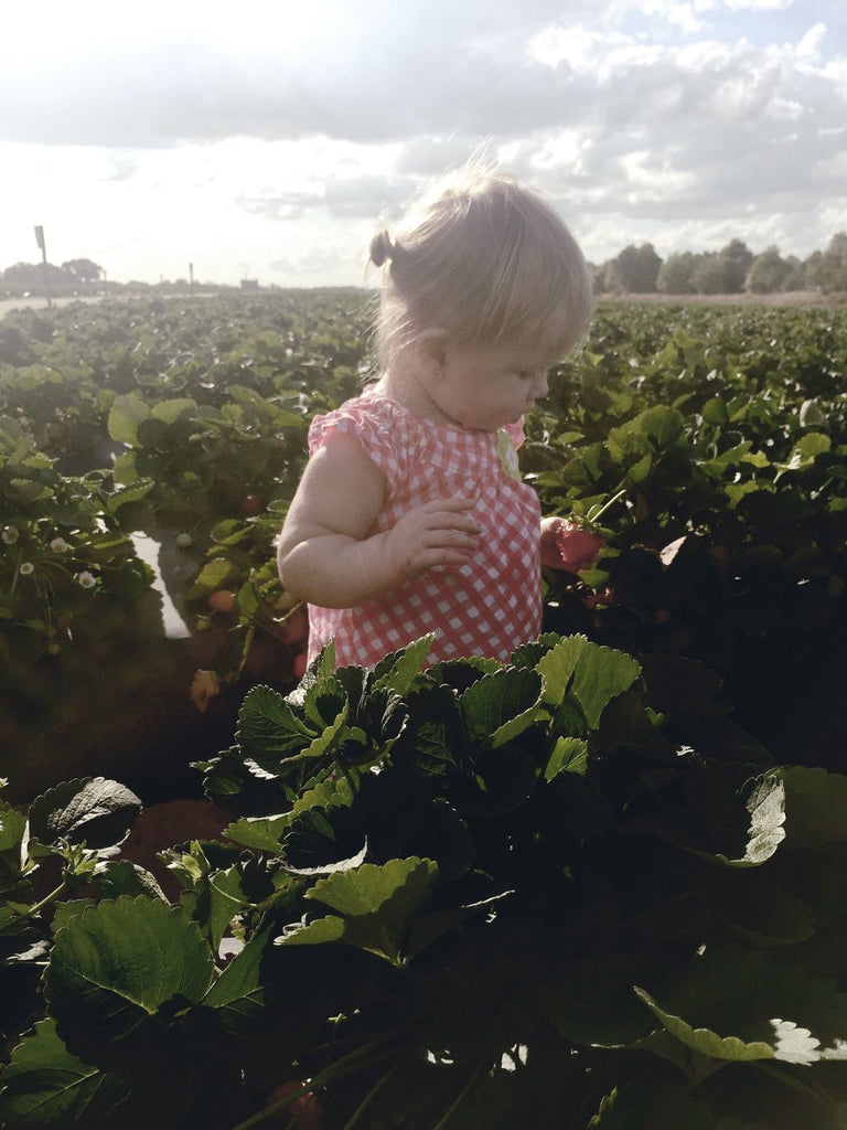 U-Pick Strawberry Season.