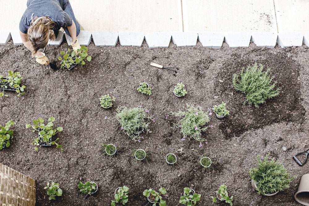 Planting your Farmhouse Garden.