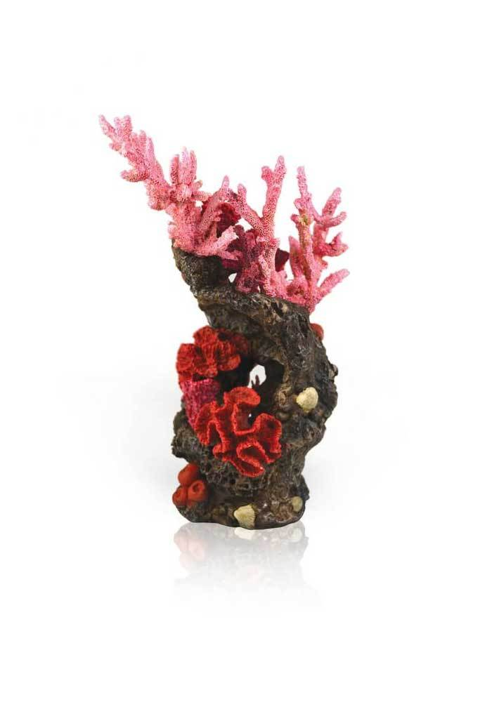 Reef ornament red