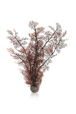 Biorb akvarieplante Sea Fan brun / Large