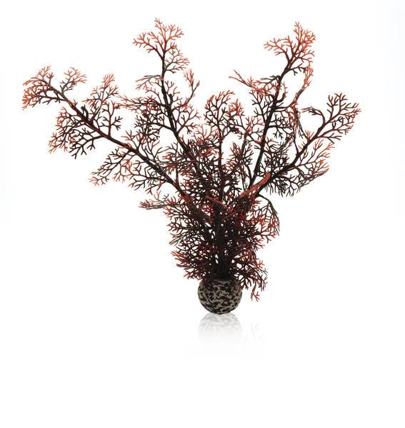 Biorb akvarieplante Sea Fan hvid / Medium