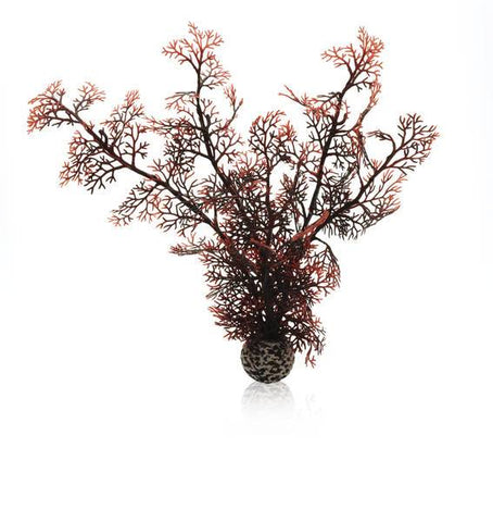 Biorb akvarieplante Sea Fan brun / Medium