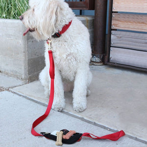 SPIleash Dog Lead great for dog treats and poo bags