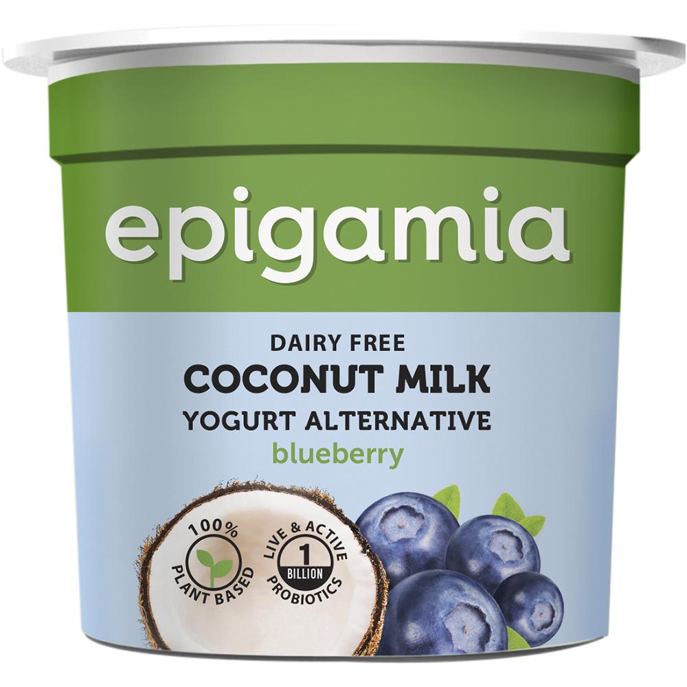 Coconut Milk Yogurt, Blueberry - 90 gm
