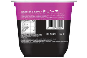 Epigamia Greek Yogurt - No Added Sugar, Mixed Berries - 120 gm
