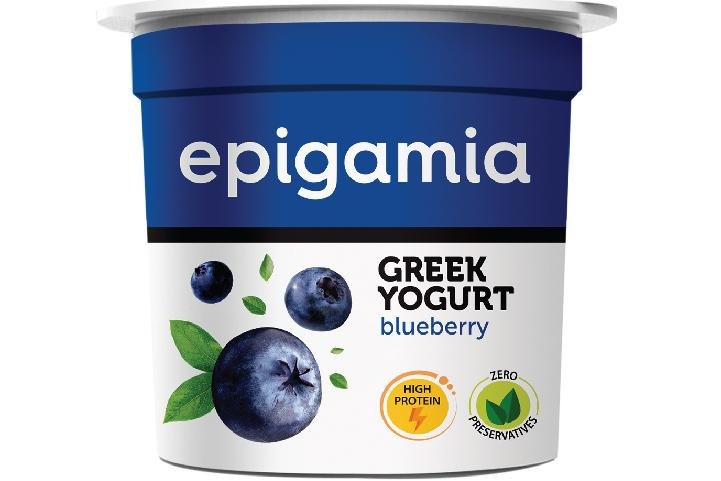 Greek Yogurt, Blueberry - 90 gm