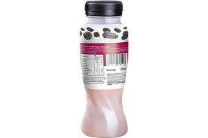 Mulberry Smoothie Multipack (Pack of 3)
