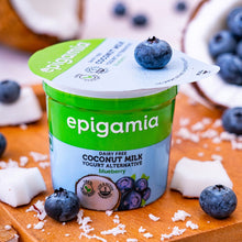 Load image into Gallery viewer, Coconut Milk Yogurt, Blueberry - 90 gm
