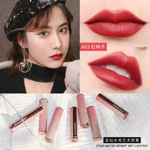 Starry Sky Lipstick Waterproof Velvet Lip Stick 10 colors Sexy Nude Matte Makeup Cosmetics