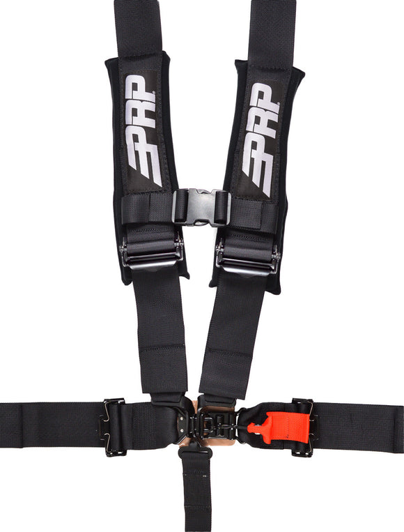Padded 5.3 Seat Belt Harness by PRP