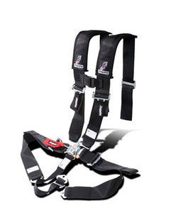 "Seat Belt Harness by Dragonfire Racing, SFI Approved, (3"" Padded)"