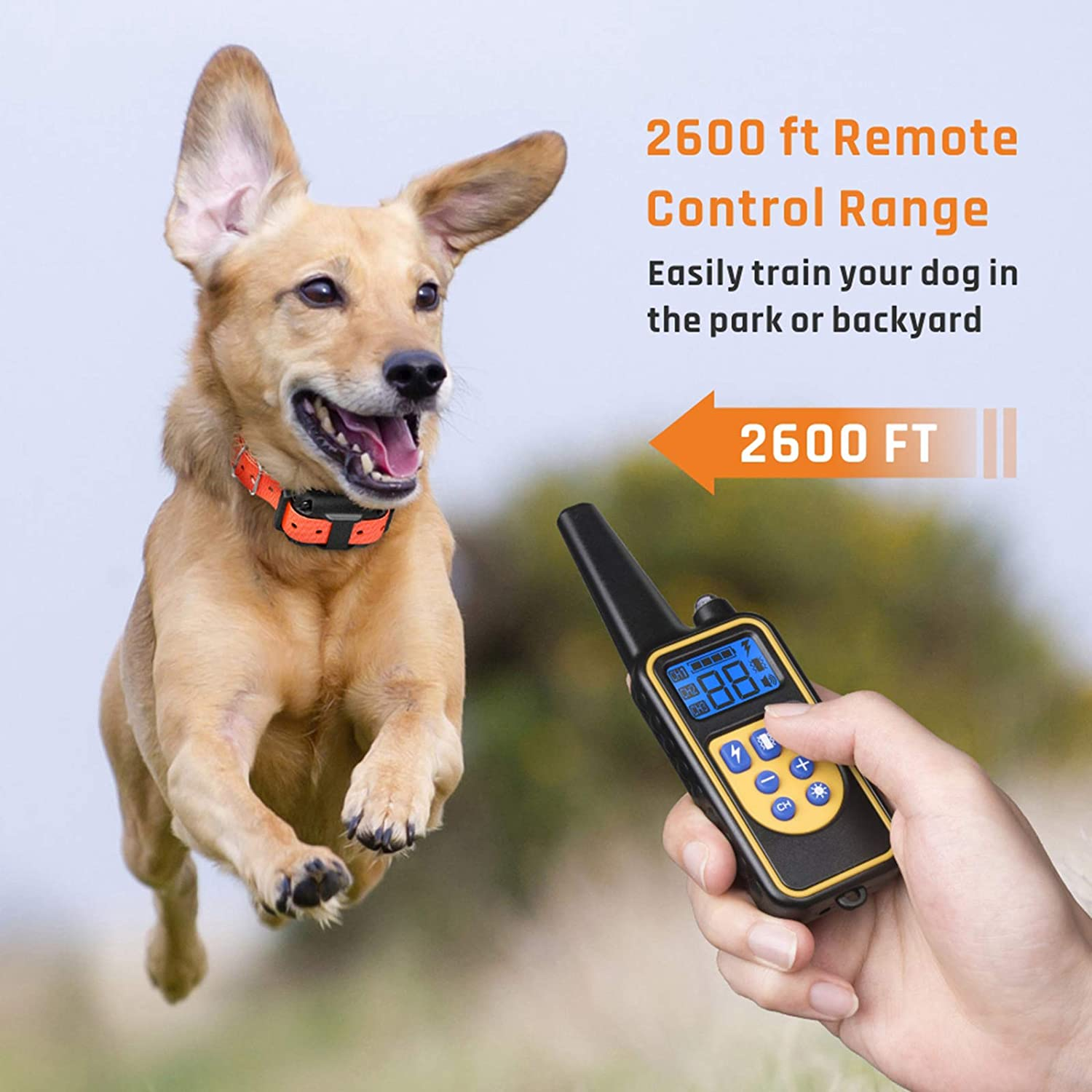 dog electronic training bark collar shock