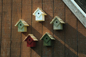 Summer Home Prepack 5 Birdhouses - Fortune And Glory - Made in USA Gifts