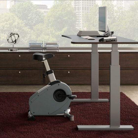 LifeSpan Fitness Under Desk Bike C3-DT3