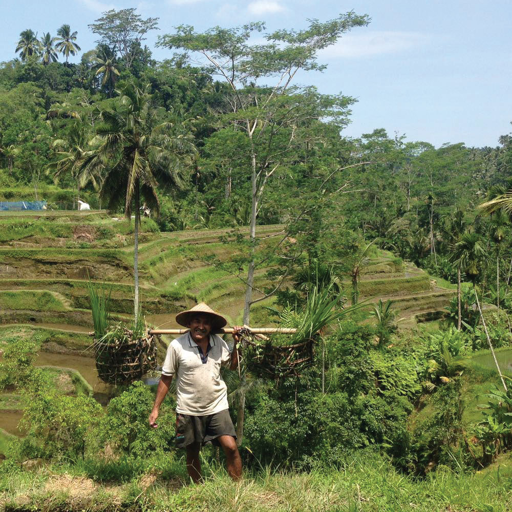 Image of Balinese man in rice paddy feels. Bali, Indonesia is where Freya Rose sources her jewellery