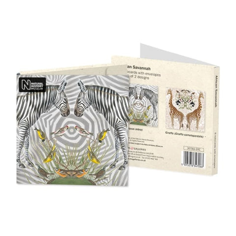 Pack of 8 Notecards - African Savannah
