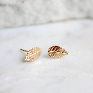 Leaf Stud Earrings 14ct Solid Gold