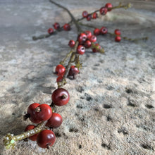Load image into Gallery viewer, Autumn Berry Branch Faux Stem Henderson's