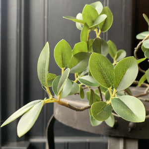 Evergreen Foliage Faux Stem Henderson's