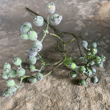 Load image into Gallery viewer, Frosted Winter Berries Faux Stem Henderson's