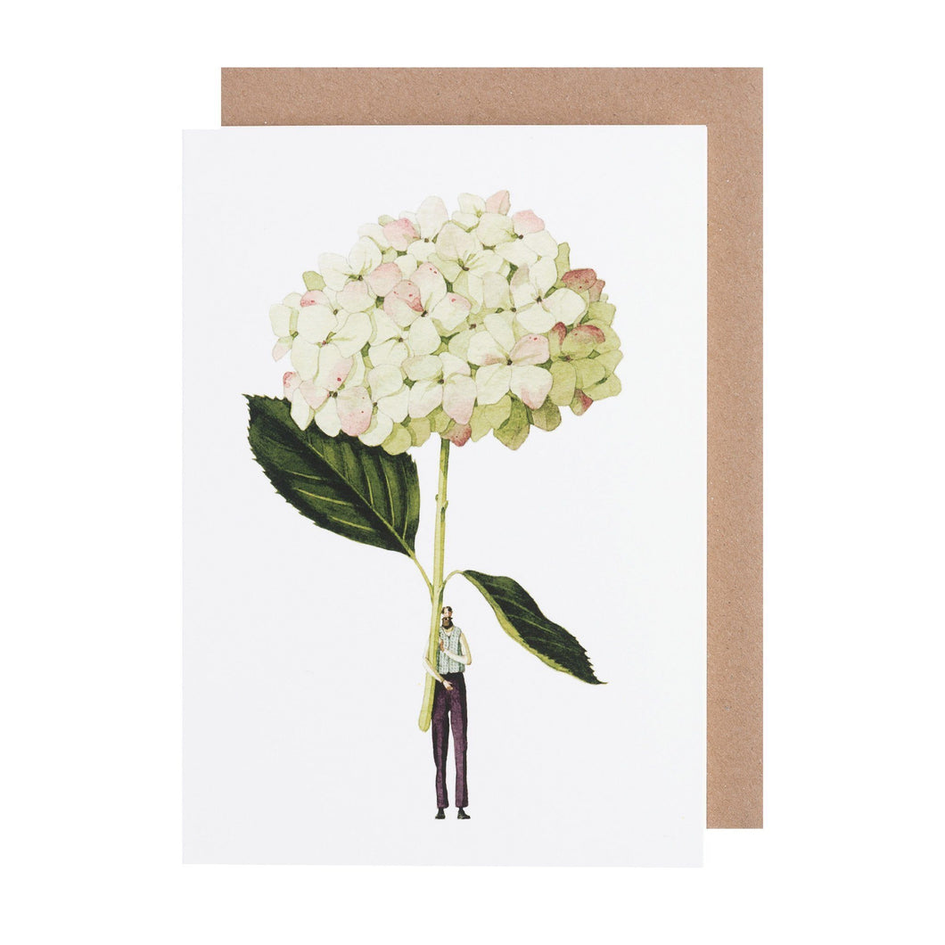 Illustrated Greetings Cards Greetings card Henderson's Green Hydrangea