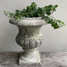 Load image into Gallery viewer, Marble Urn Garden Urn Henderson's