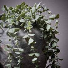 Load image into Gallery viewer, Trailing Eucalyptus Faux Plant Henderson's