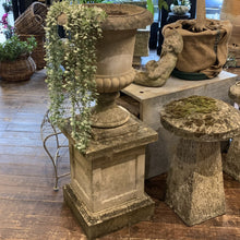 Load image into Gallery viewer, Versailles Planter & Plinth Henderson's