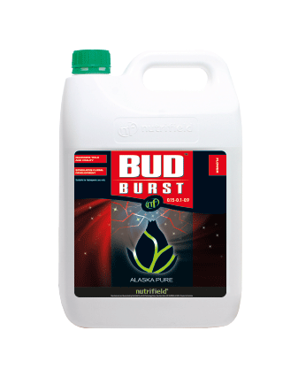 Bud Burst™ (Previously Alaska Pure®)