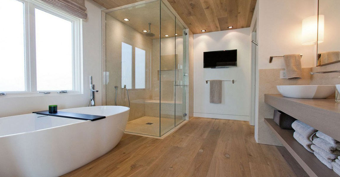 bathroom designs dry and wet area