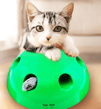 Cat Toy Funny Cat Interactive Toy At Scratching Device
